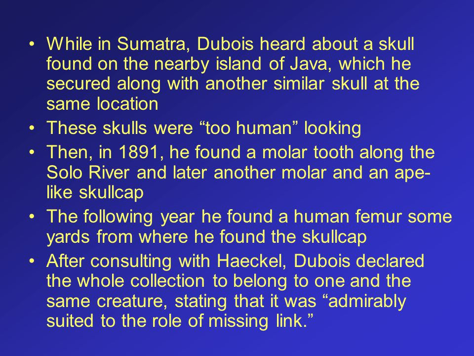 While in Sumatra, Dubois heard about a skull found on the nearby island of Java, which he secured along with another similar skull at the same location