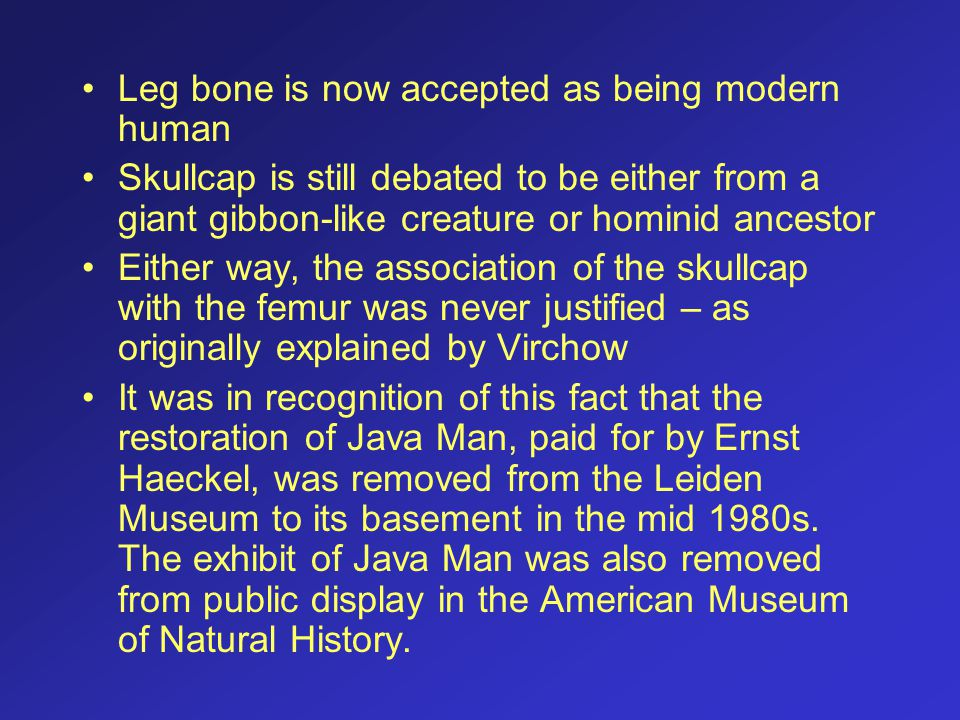 Leg bone is now accepted as being modern human