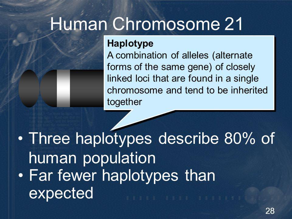 Human Chromosome 21 Diversity