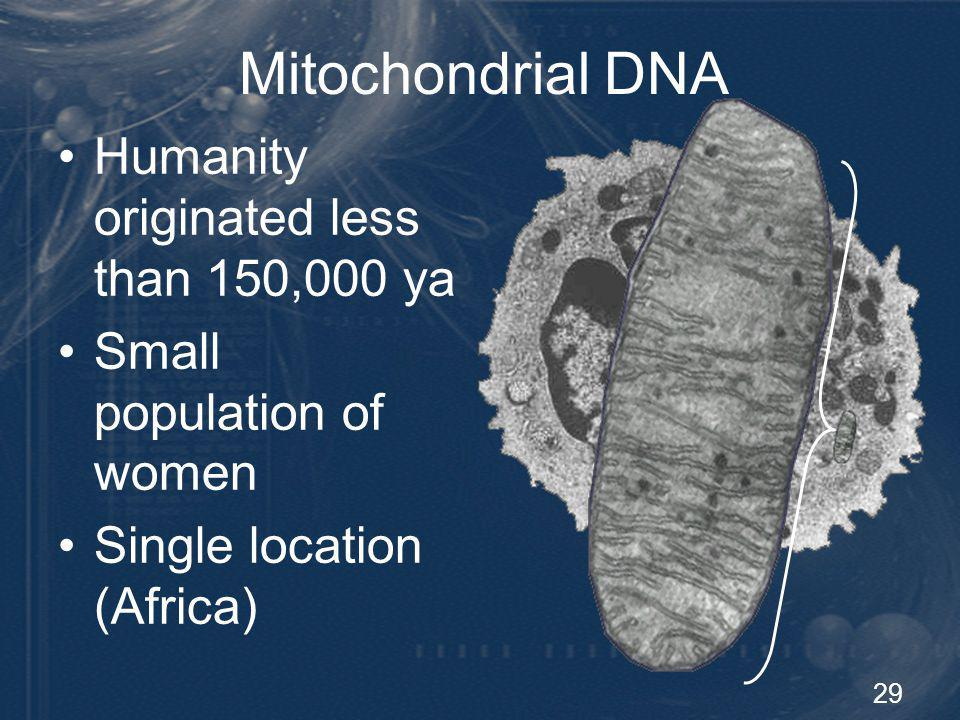 mitochondrial dna and human evolution pdf