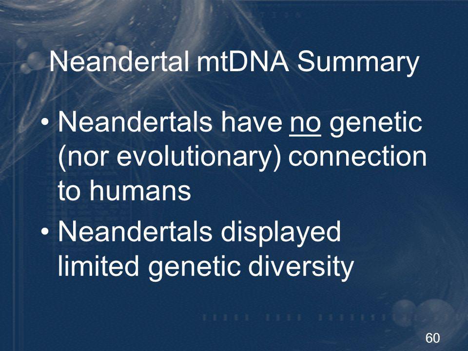 Neandertal mtDNA Summary