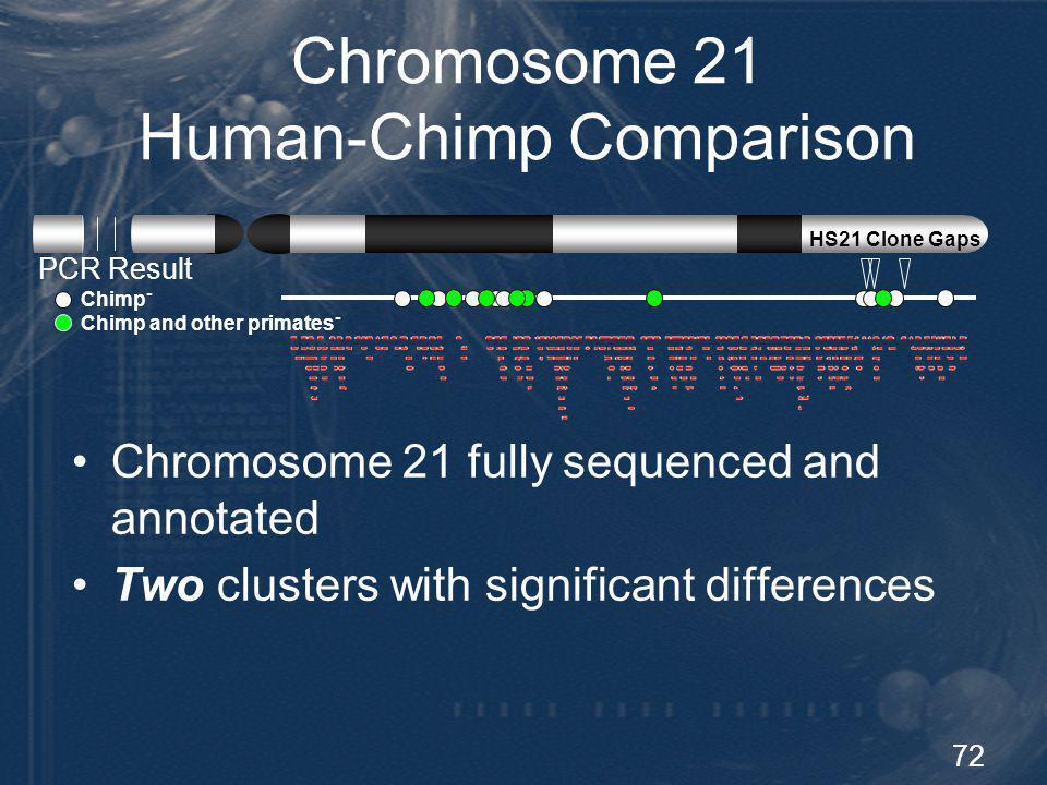 Chromosome 21 Human-Chimp Comparison