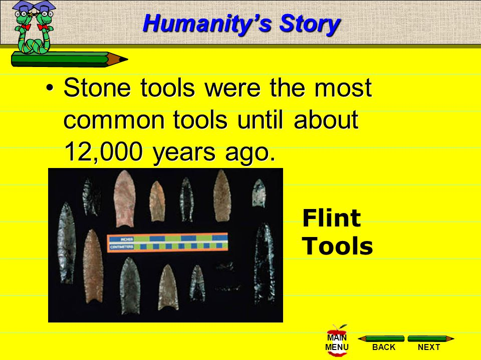 Stone tools were the most common tools until about 12,000 years ago.