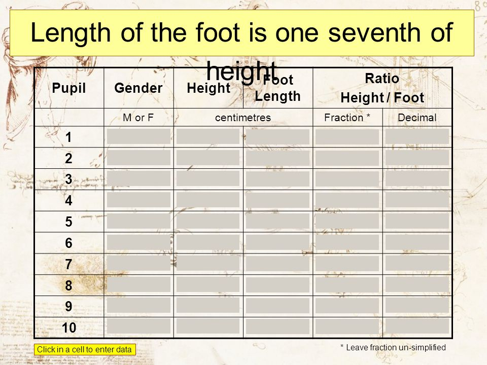 Length of the foot is one seventh of height