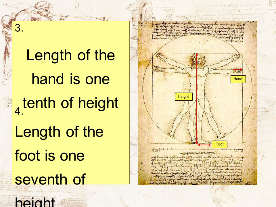 Length of the hand is one tenth of height