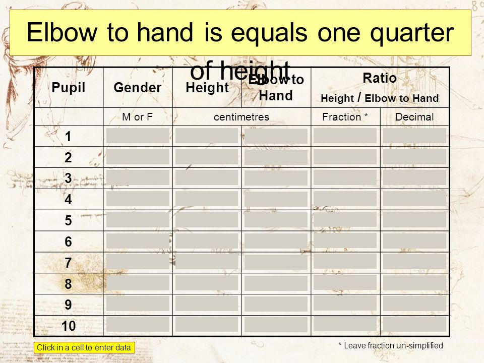 Elbow to hand is equals one quarter of height