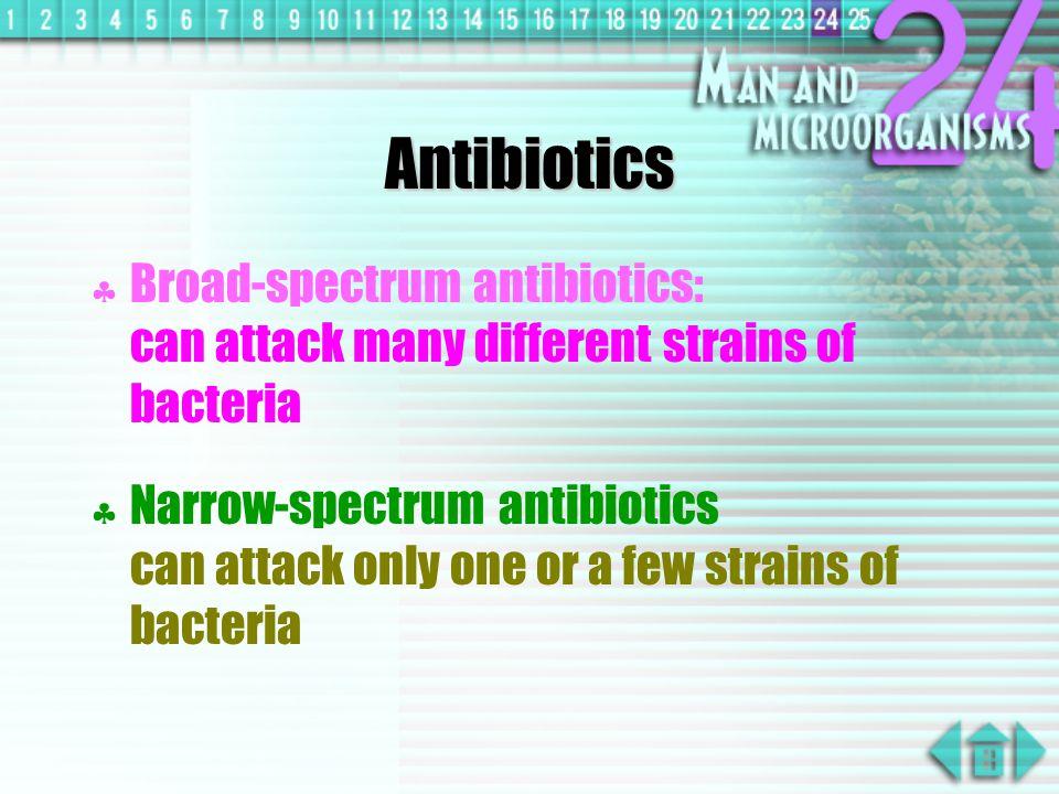 Antibiotics Broad-spectrum antibiotics: can attack many different strains of bacteria.