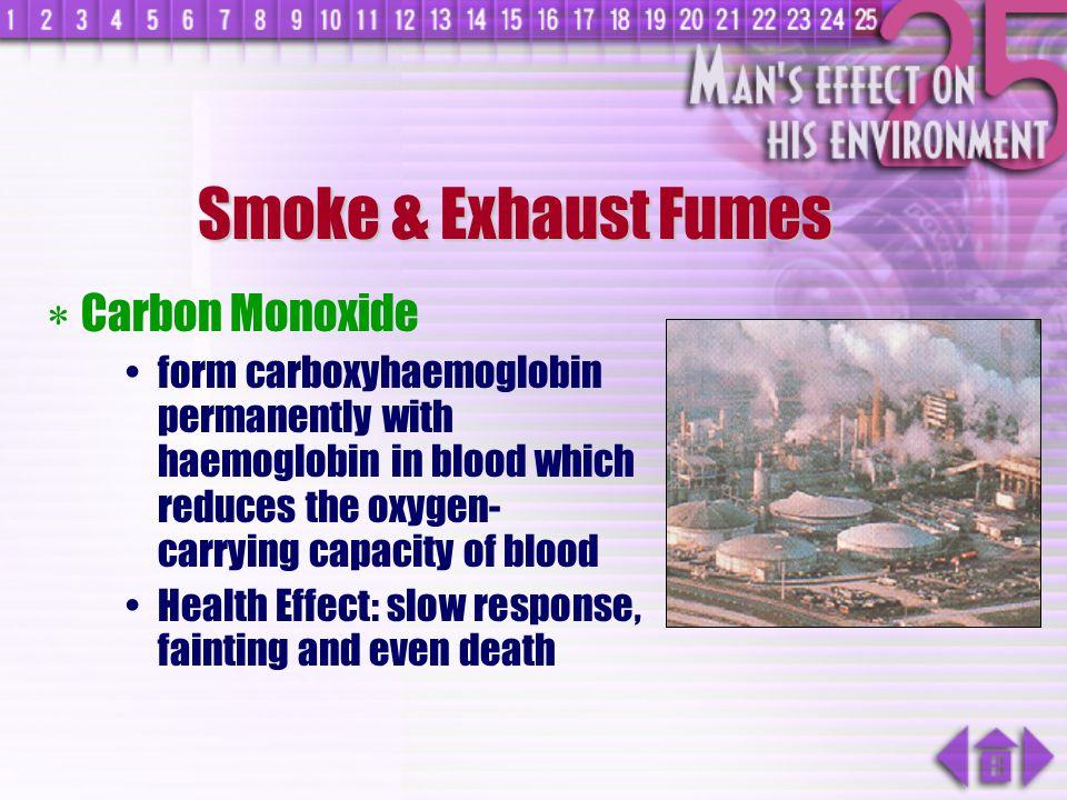 Smoke & Exhaust Fumes Carbon Monoxide