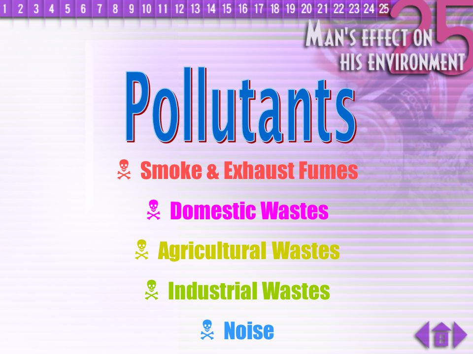 Pollutants Smoke & Exhaust Fumes Domestic Wastes Agricultural Wastes