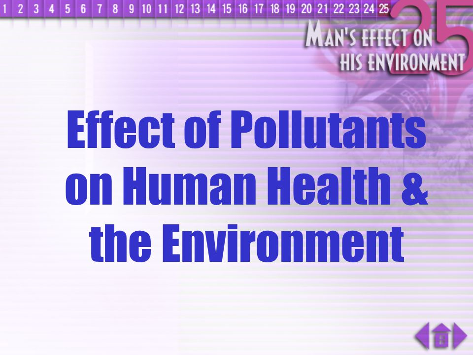 Effect of Pollutants on Human Health & the Environment