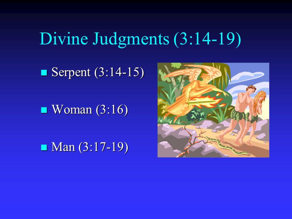 Divine Judgments (3:14-19) Serpent (3:14-15) Woman (3:16)