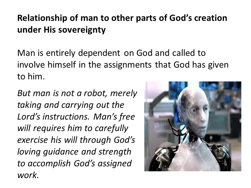 Relationship of man to other parts of God's creation under His sovereignty
