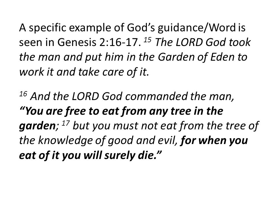 A specific example of God's guidance/Word is seen in Genesis 2:16-17