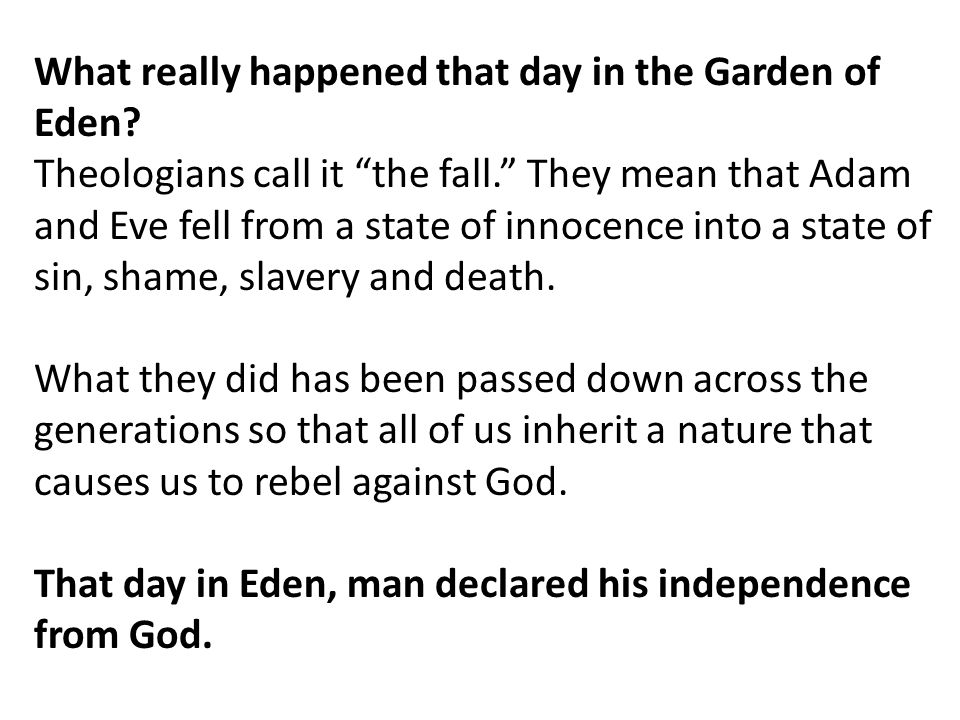 What really happened that day in the Garden of Eden