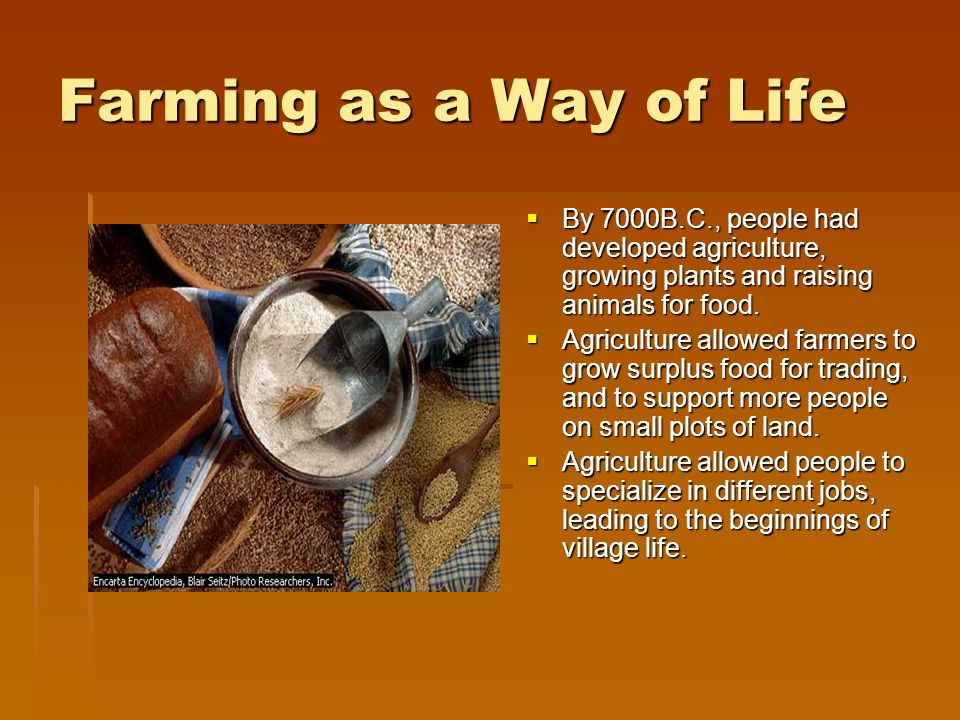 Farming as a Way of Life By 7000B.C., people had developed agriculture, growing plants and raising animals for food.