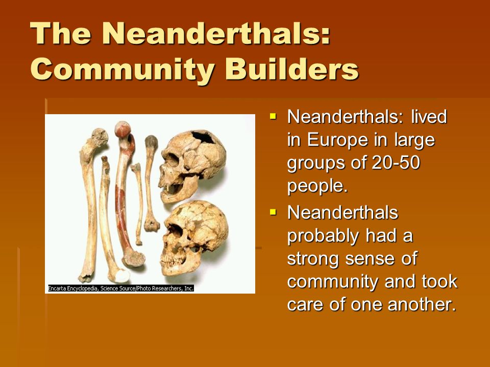 The Neanderthals: Community Builders