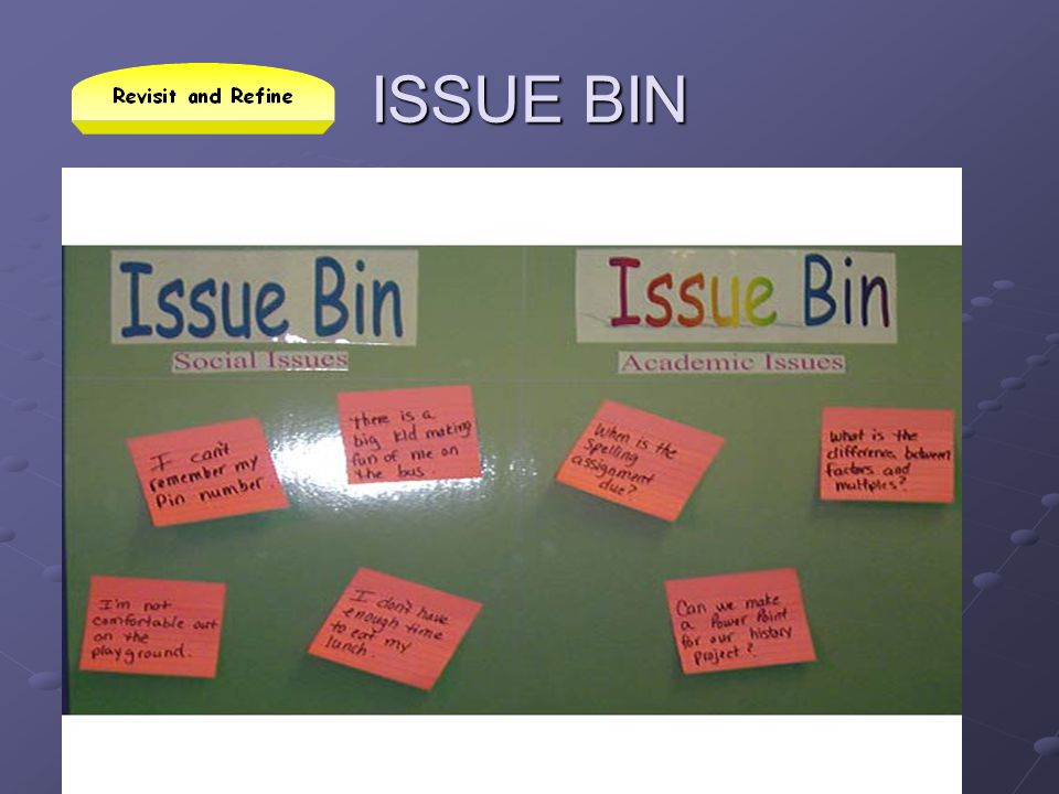 ISSUE BIN Read slide