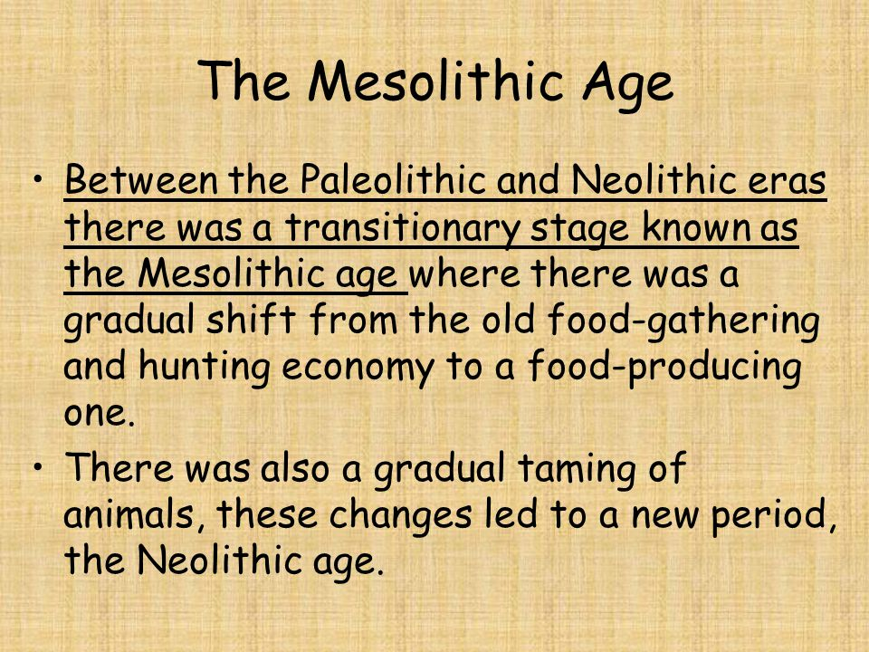 The Mesolithic Age