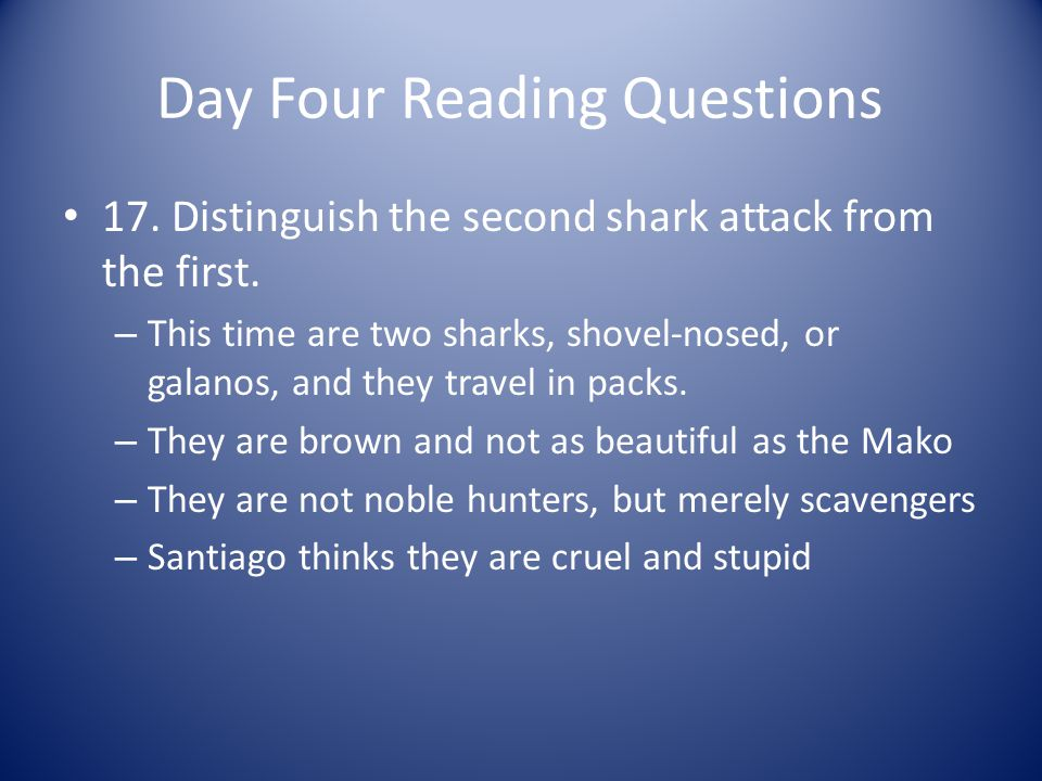 Day Four Reading Questions