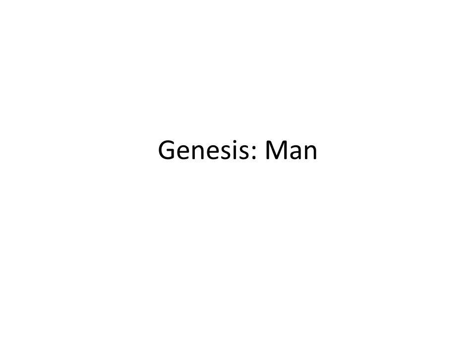 Genesis: Man