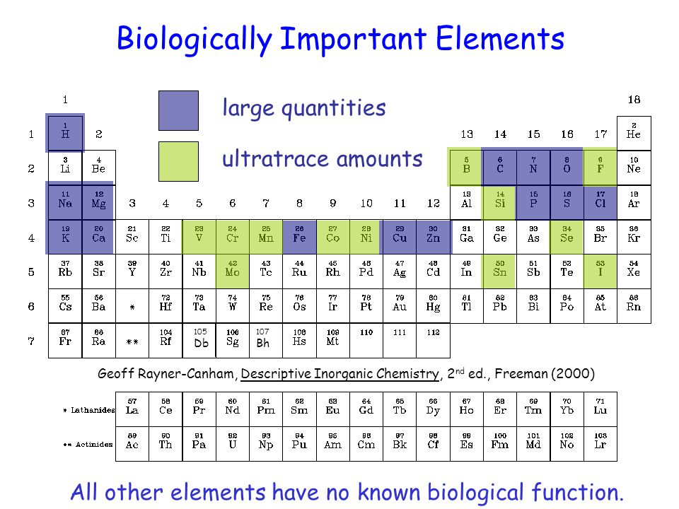 Periodic Table Of The Elements Ppt Video Online Download