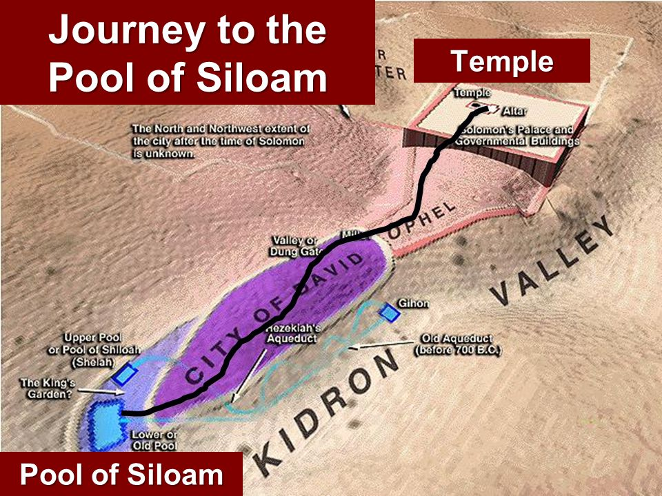 Journey to the Pool of Siloam