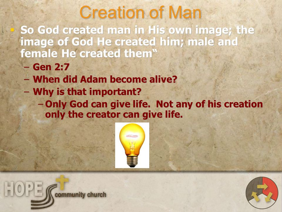 Creation of Man So God created man in His own image; the image of God He created him; male and female He created them