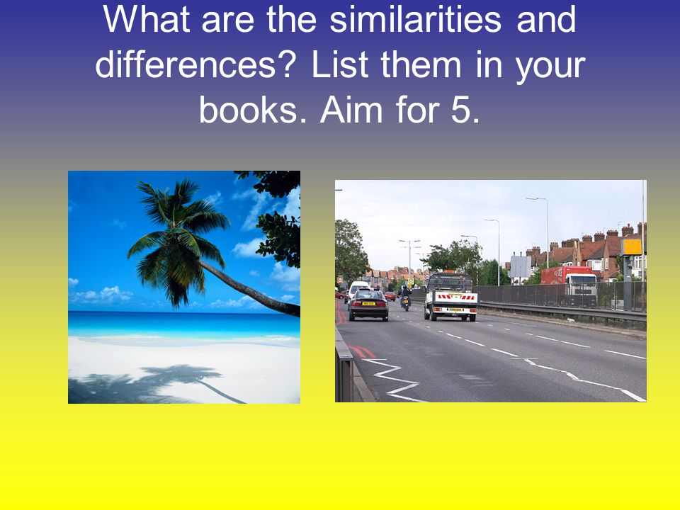 What are the similarities and differences. List them in your books