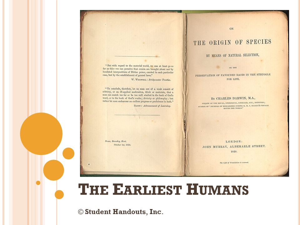 The Earliest Humans © Student Handouts, Inc.