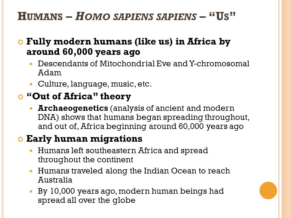 Humans – Homo sapiens sapiens – Us