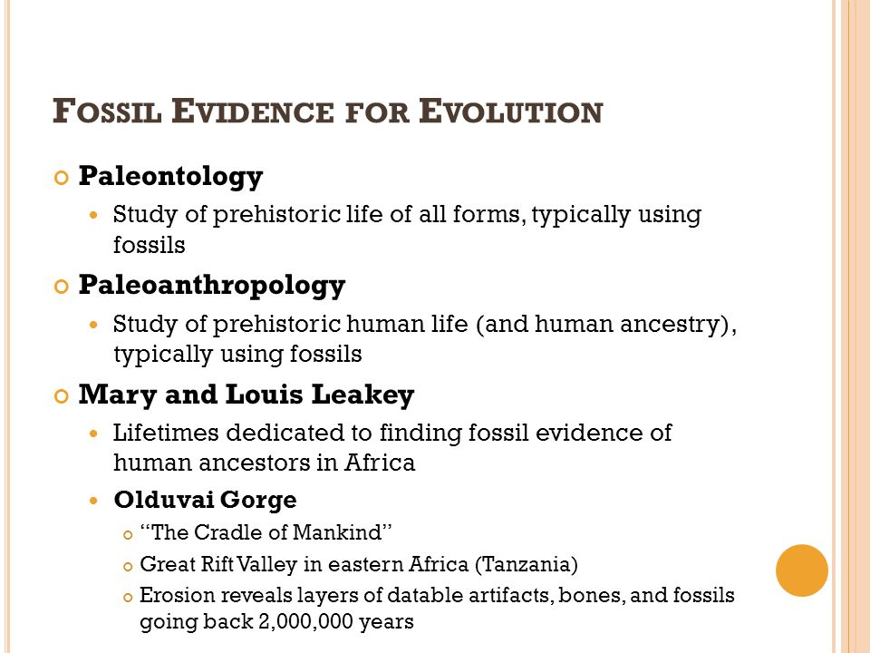 Fossil Evidence for Evolution