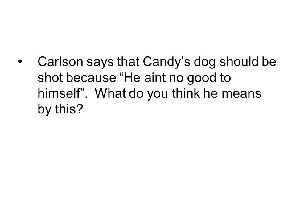 Carlson says that Candy's dog should be shot because He aint no good to himself .