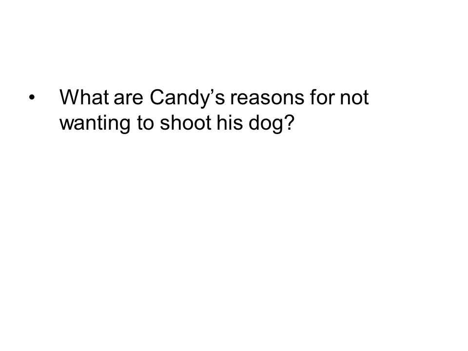 What are Candy's reasons for not wanting to shoot his dog