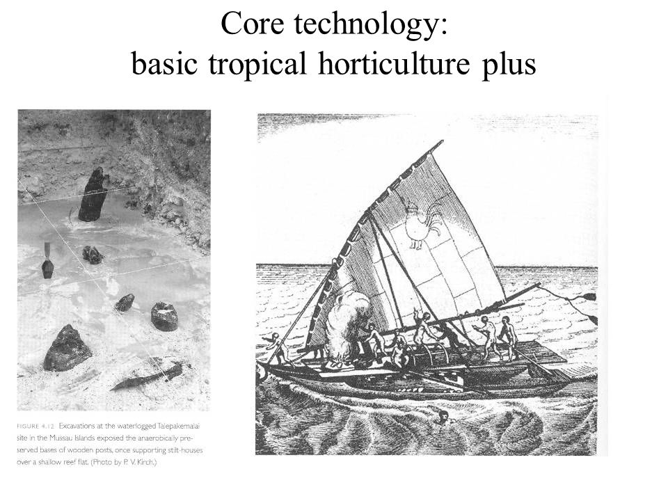 Core technology: basic tropical horticulture plus