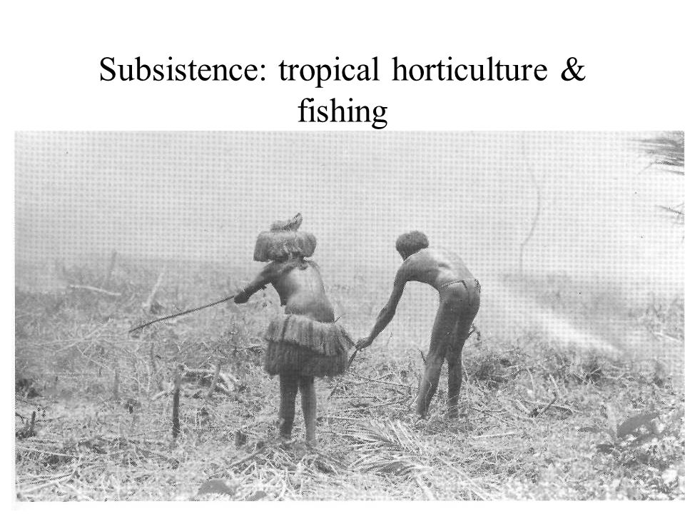 Subsistence: tropical horticulture & fishing