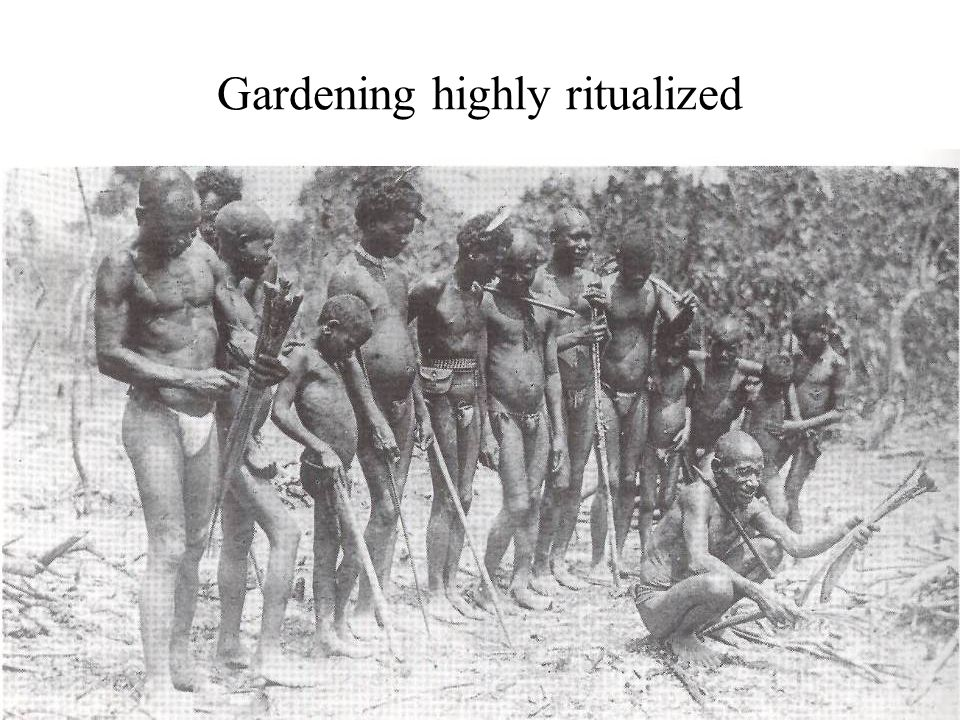 Gardening highly ritualized
