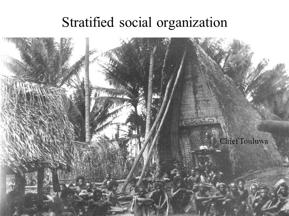 Stratified social organization