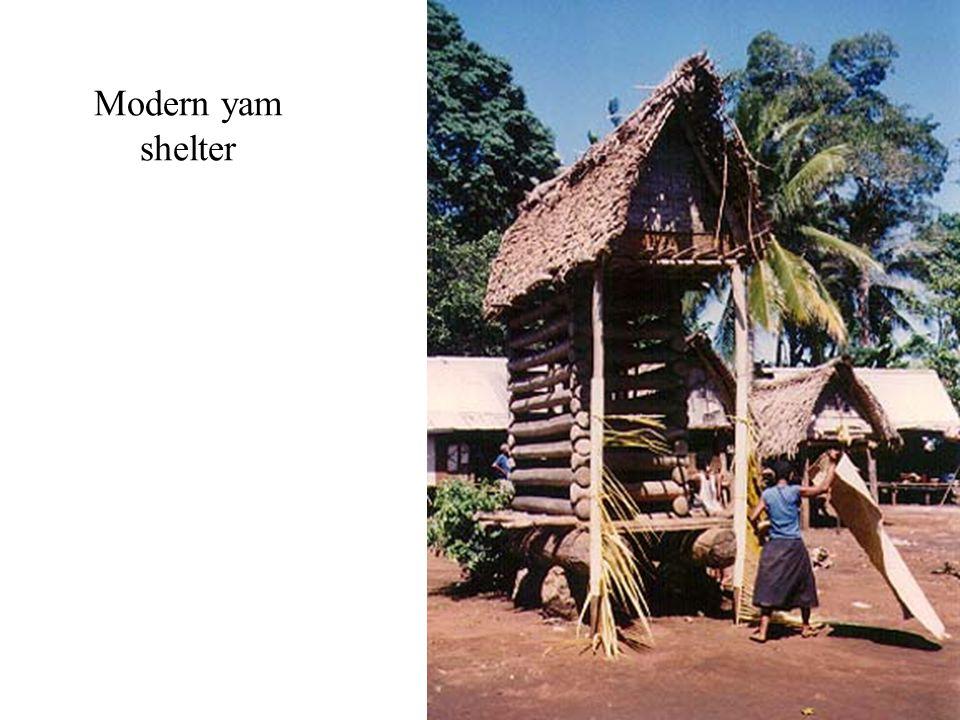 Modern yam shelter
