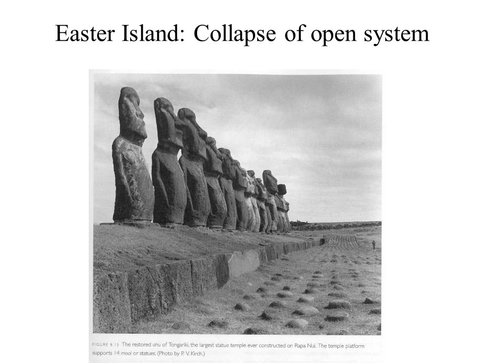 Easter Island: Collapse of open system