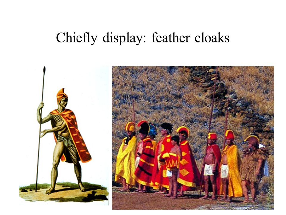 Chiefly display: feather cloaks