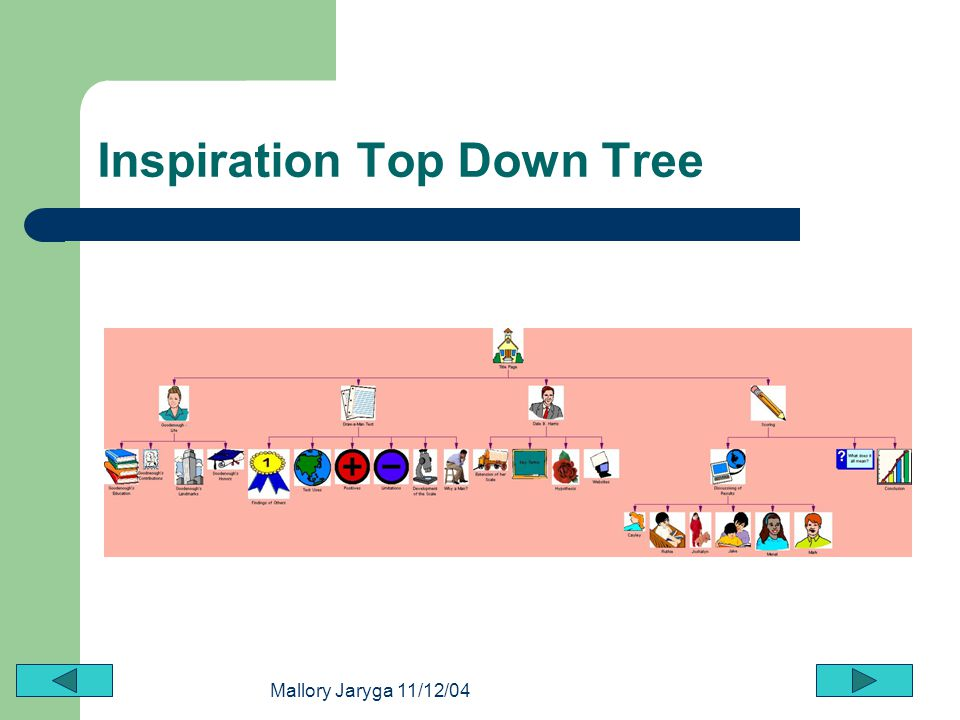 Inspiration Top Down Tree