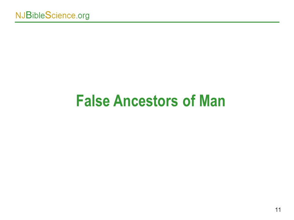 False Ancestors of Man As above