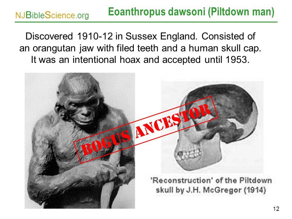 Eoanthropus dawsoni (Piltdown man)