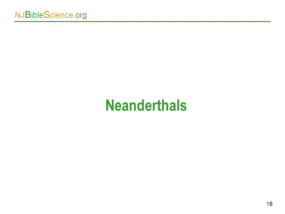 Neanderthals As above. 16 16