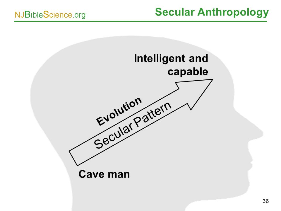 Secular Pattern Secular Anthropology Intelligent and capable Evolution