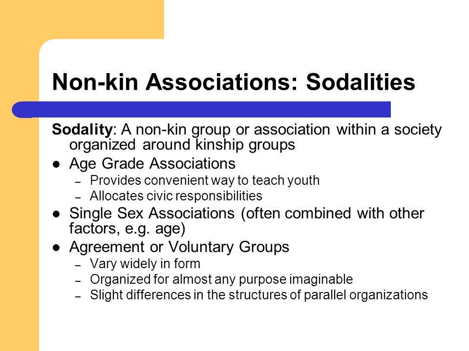 Non-kin Associations: Sodalities