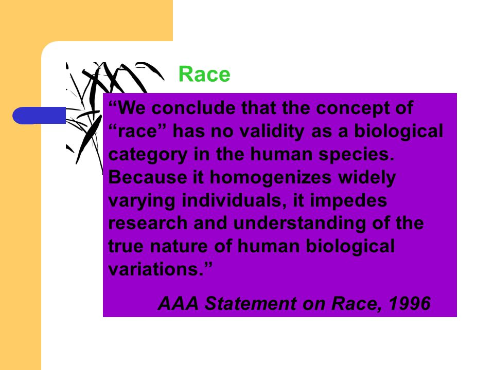 We conclude that the concept of race has no validity as a biological category in the human species. Because it homogenizes widely varying individuals, it impedes research and understanding of the true nature of human biological variations.