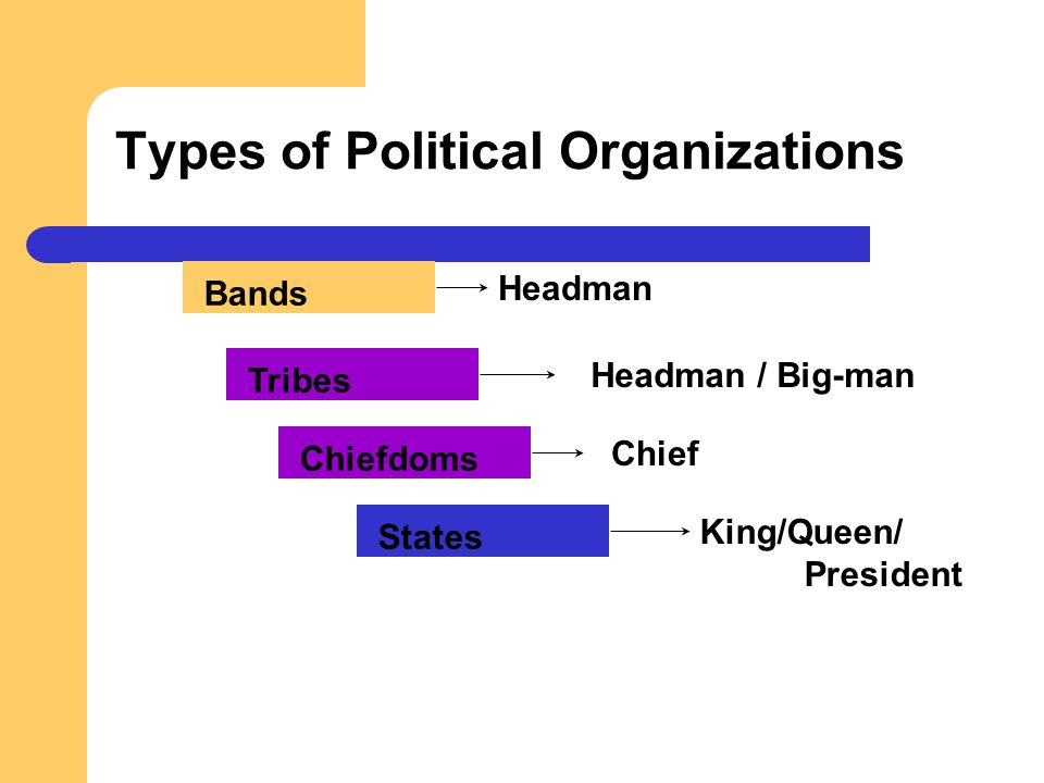 Types of Political Organizations