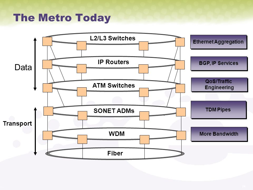 The Metro Today Data L2/L3 Switches IP Routers ATM Switches SONET ADMs