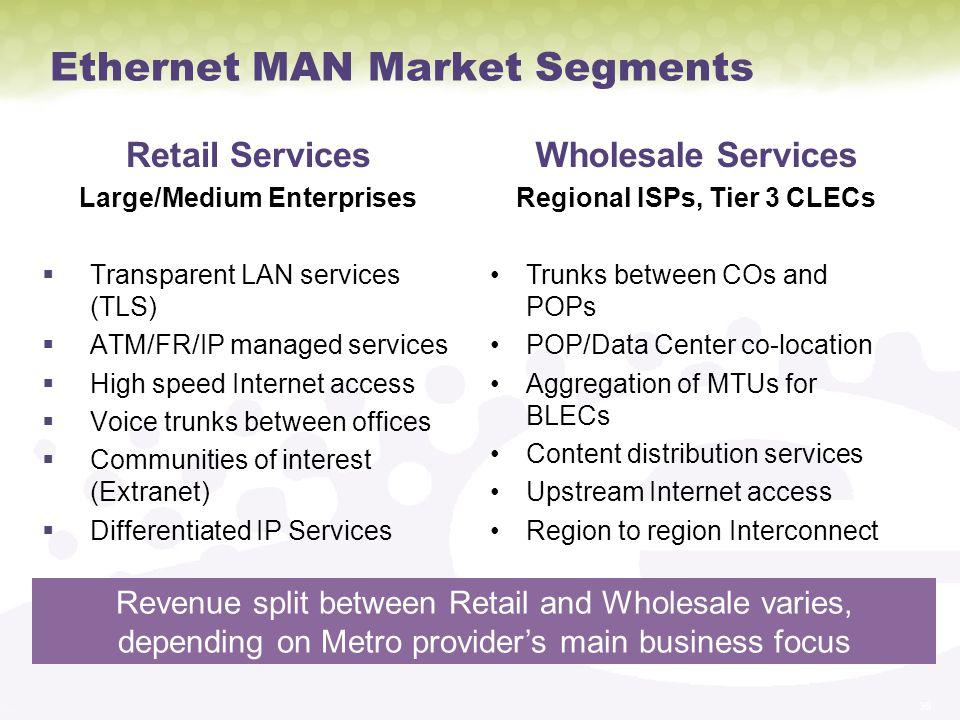 Ethernet MAN Market Segments